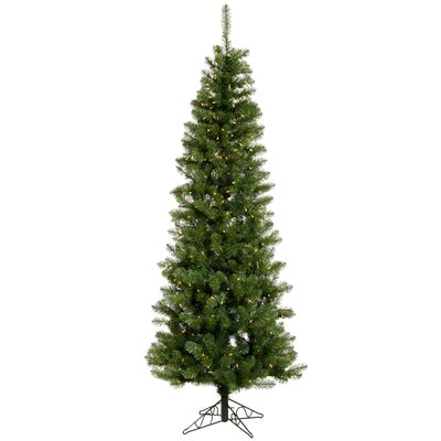 Vickerman Salem Pencil Pine 4.5' Green Artificial Christmas Tree with 150 Clear Lights with ...