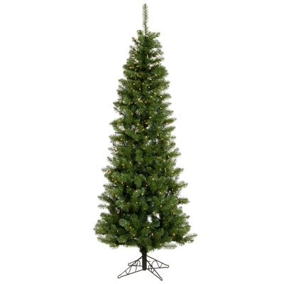 Vickerman Salem Pencil Pine 9.5' Green Artificial Christmas Tree with 600 Clear Lights with ...