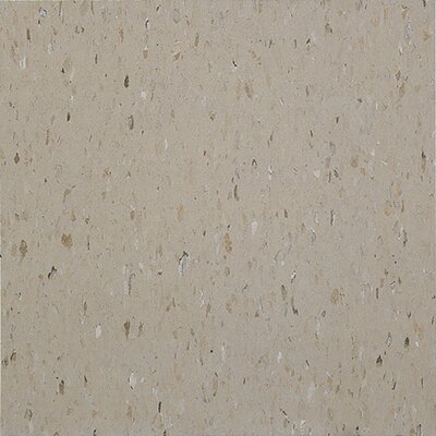 "Congoleum Alternatives 12"" x 12"" Vinyl Tile in Warm Taupe"