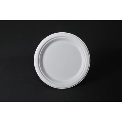 "SCT® 10"" ChampWare Heavyweight Bagasse Dinnerware Plate in White"