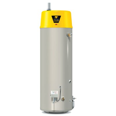 BTX-80 Commercial Tank Type Water Heater Nat Gas 50 Gal Cyclone HE 76,000 BTU Input ...