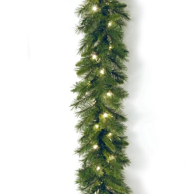 """National Tree Co. Pre-Lit 9' x 10"""" Winchester Pine Garland"""
