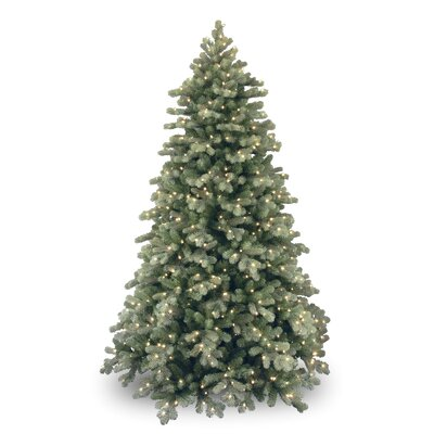 National Tree Co. Colorado Spruce 7.5' Green Poly Frosted Artificial Christmas Tree with 750 Pre-Lit Clear Lights with Stand