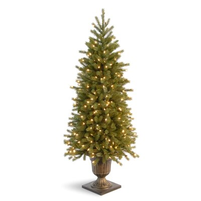 National Tree Co. Jersey Fraser Fir 4' Green Entrance Artificial Christmas Tree with 100 ...