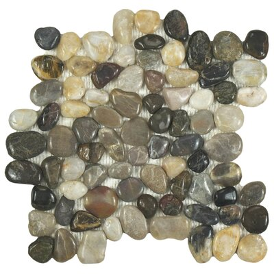 Brook Stone Random Sized Polished Natural Stone Mosaic in Multicolored