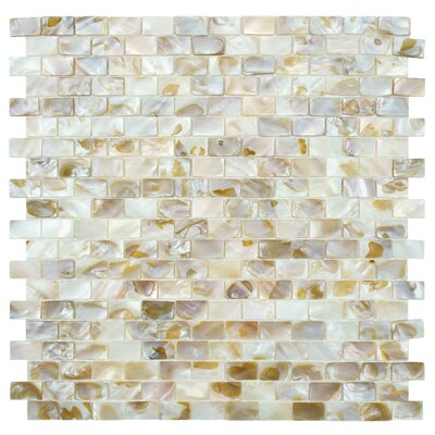 EliteTile Shore Natural Shell Mosaic Tile in Natural
