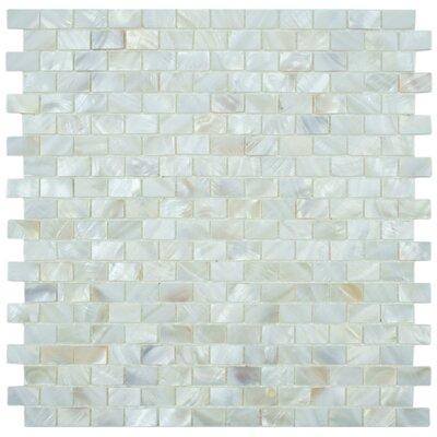 EliteTile Shore Natural Shell Mosaic Tile in White
