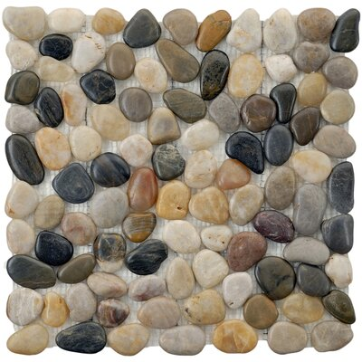 "EliteTile Brook Stone 12"" x 12"" Polished Natural Stone Mosaic in Multicolored"