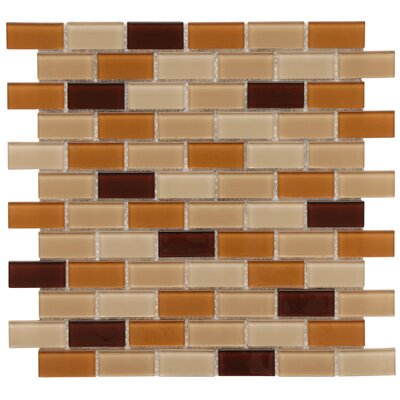 "EliteTile Ambit 11-3/4"" x 11-3/4"" Polished Glass Subway Mosaic in Café"