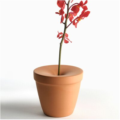 Bud Vase (Set of 2)