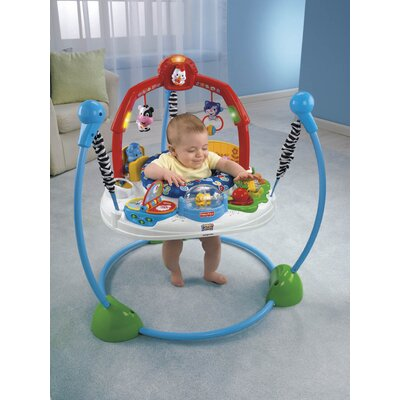 Fisher-Price Laugh'n Learn Jumperoo