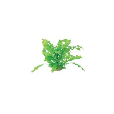 Pure Aquatic Natural Elements Aponogeton Combo Aquarium Ornament in Green