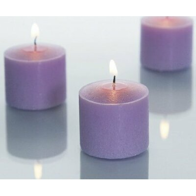 Light In the Dark Unscented Votive Candles (Set of 72)