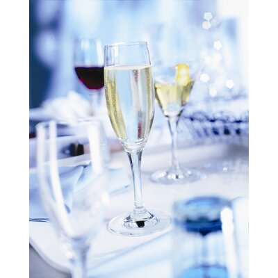 Schott Zwiesel Mondial Tritan Drinkware Collection