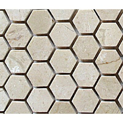 "Diamond Tech Tiles Stone 12"" x 12"" Polished Hexagon Mosaic in Crema Marfil"