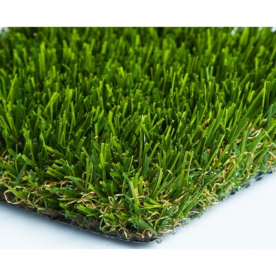 "Everlast Turf Diamond Pro Spring 96"" x 60"" Synthetic Lawn Grass Turf"