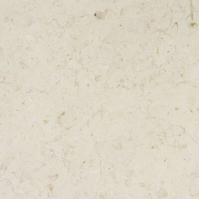 "MS International 12"" x 12"" Honed Limestone in Jerusalem Bone"