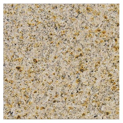 "MS International 12"" x 12"" Polished Granite Tile in Giallo Fantasia"