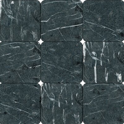 MS International Tumbled Marble Tile in China Black