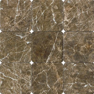 Polished Marble Tile in Laurent Brown