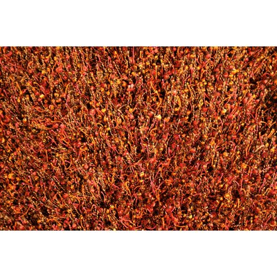 Loloi Rugs Dion Area Rug & Reviews