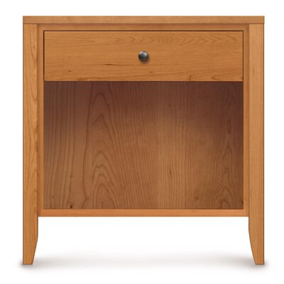 Dominion 1 Drawer Nightstand with Flush Mounted Top