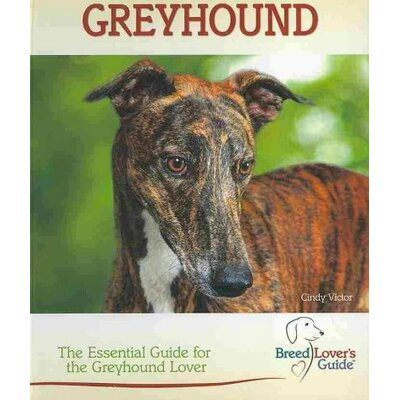 TFH Publications Greyhound; A Practical Guide for the Greyhound Lover