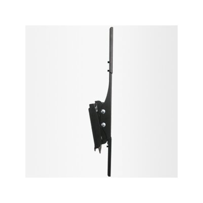 Loctek Wall Mount Bracket for Plasma / LCD TV with Tilt