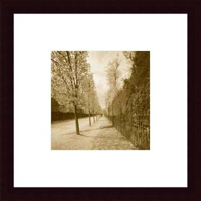 Barewalls French Jardin by Wampler  Wood Framed Art Print