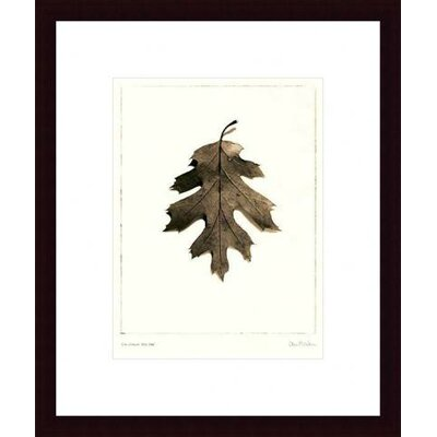 Barewalls California Red Oak Wood Framed Art Print