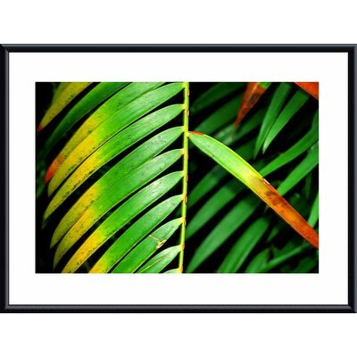 Colorful Palm Leaf Metal Framed Art Print