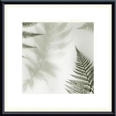 Barewalls Ferns No. 2 Metal Framed Art Print
