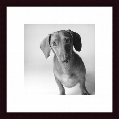 Barewalls Cecil Wood Framed Art Print