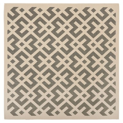 Safavieh Courtyard Grey & Bone Rug