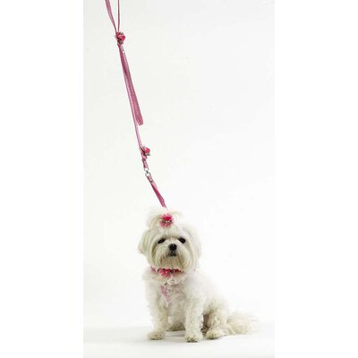 A Pet's World Pink Gingham One Piece Step in Harness with Petal Flower Rosettes and Pearls