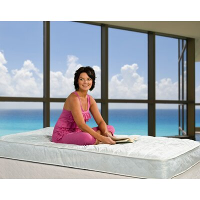 Wolf Mattress Slumber Express One Quilt Top Mattress