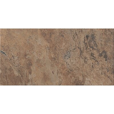 "Florim USA Tundra 24"" x 12"" Glazed Porcelain Field Tile in Terrain"