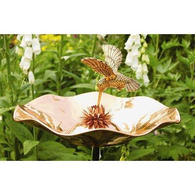 ACHLA Hummingbird Birdbath