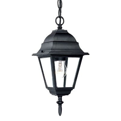 Acclaim Lighting Builder's Choice 1 Light Outdoor Hanging Lantern