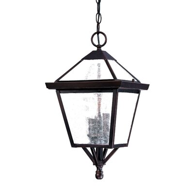 Acclaim Lighting Charleston 3 Light Outdoor Hanging Lantern