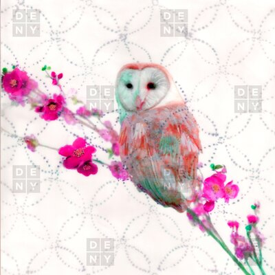 DENY Designs Hadley Hutton Quinceowl Polyesterrr Shower Curtain