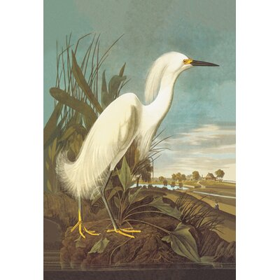 Buyenlarge Snowy Egret Canvas Art