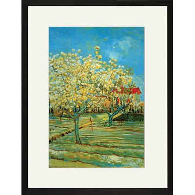 Orchard with Cypress by Vincent Van Gogh Framed Painting Print