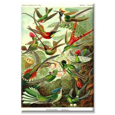 Buyenlarge Hummingbirds Canvas Wall Art