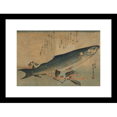 Striped Mullet Framed and Matted Print