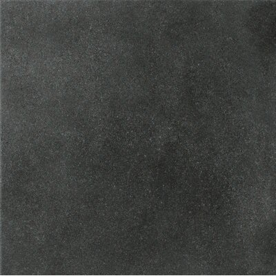 "Marca Corona Natural Living 12"" x 12"" Unpolished Porcelain Field Tile in Dark"