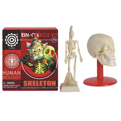 Skeleton Box Kit