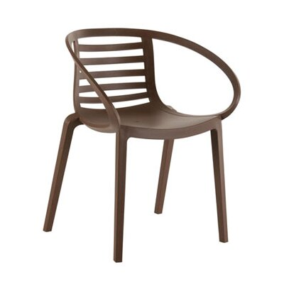 Papatya Mambo Arm Chair
