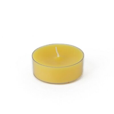 Zest Candle Mega Oversized Tealight