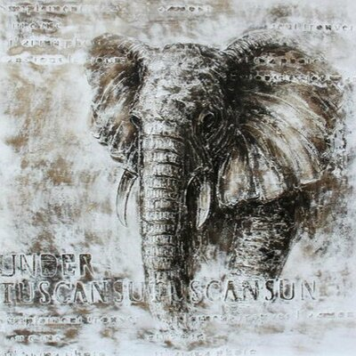 Casabianca Furniture Elephant Framed Painting Print
